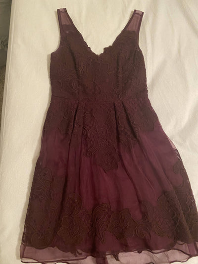 Anthropologie Burgandy A-Line Dress with Lace