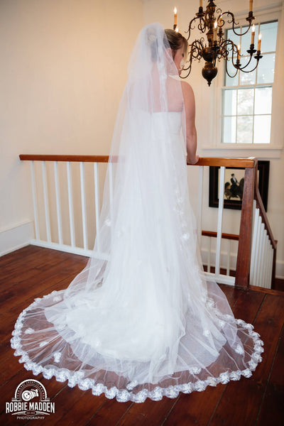 Dollar wedding veil