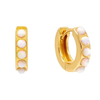 Opal Huggie Earring  | Urban Accessories NYC