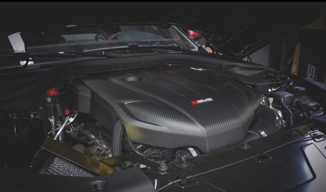 AMS 2020 supra carbon engine cover