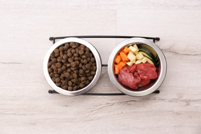 Help lower your dog's risk of cancer with some fresh food!