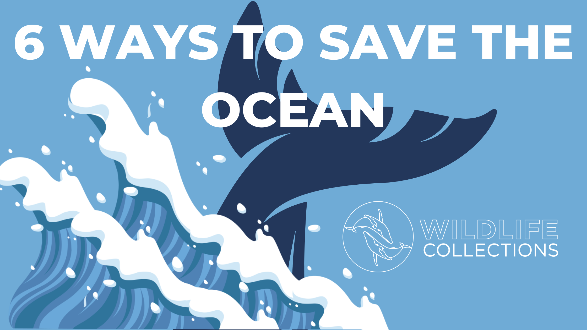 ways to save the ocean