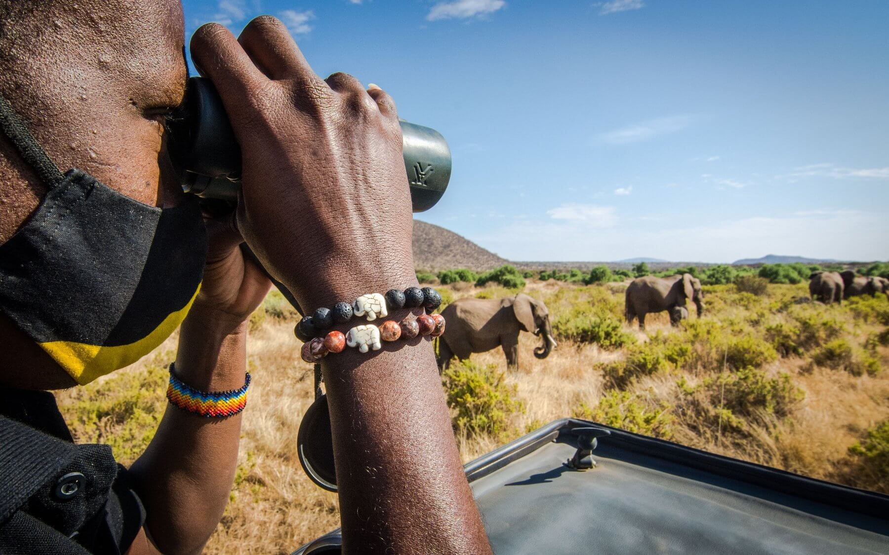 Track a Elephant with Each Bracelet | Wildlife Collections
