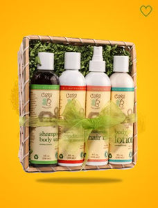 Gift Basket - Baby Skin & Hair Care Products