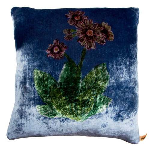 Blue Velvet Auricula Cushion