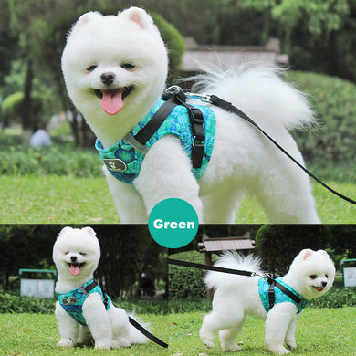Reflective Small Dog Harness and Leash Set Lovin Little Greys -