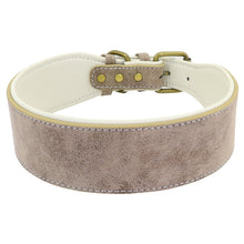 Load image into Gallery viewer, Wide Leather Dog Collar Lovin Little Greys -