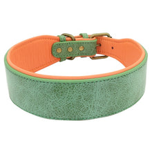 Load image into Gallery viewer, Wide Leather Dog Collar Lovin Little Greys - Green / XL