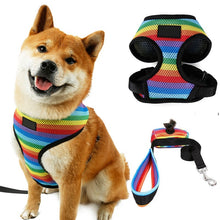 Load image into Gallery viewer, Rainbow Dog Harness Vest & Leash Lovin Little Greys - Rainbow / S