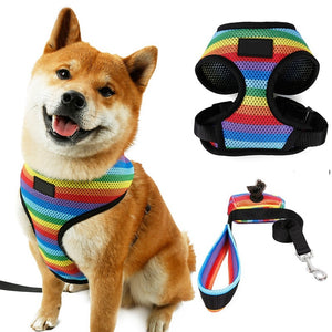 Rainbow Dog Harness Vest & Leash Lovin Little Greys - Rainbow / S