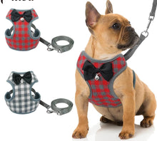 Load image into Gallery viewer, Small Pet Harness and Leash Set Lovin Little Greys -