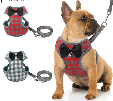 Small Pet Harness and Leash Set Lovin Little Greys -
