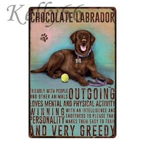 Metal Dog Plaque Lovin Little Greys - 20X30 / Chocolate Labrador