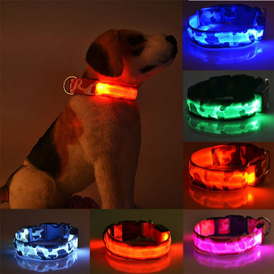 LED Luminous Pet Collar Lovin Little Greys -