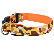 Load image into Gallery viewer, LED Luminous Pet Collar Lovin Little Greys - Orange / L
