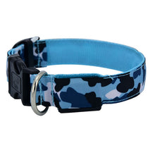 Load image into Gallery viewer, LED Luminous Pet Collar Lovin Little Greys - Blue / L