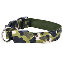 Load image into Gallery viewer, LED Luminous Pet Collar Lovin Little Greys - Green / L