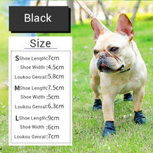 Load image into Gallery viewer, Rubber Rain Boots for Dogs & Cats Lovin Little Greys - Black / M