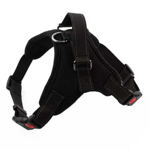 Reflective K9 Adjustable Dog Harness Lovin Little Greys - Black / L