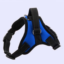 Load image into Gallery viewer, Reflective K9 Adjustable Dog Harness Lovin Little Greys - Blue / L