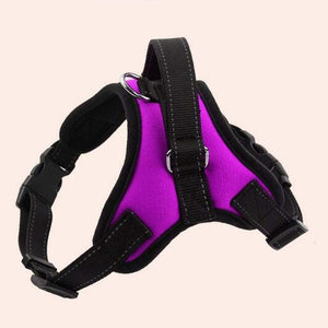 Reflective K9 Adjustable Dog Harness Lovin Little Greys - Purple / L