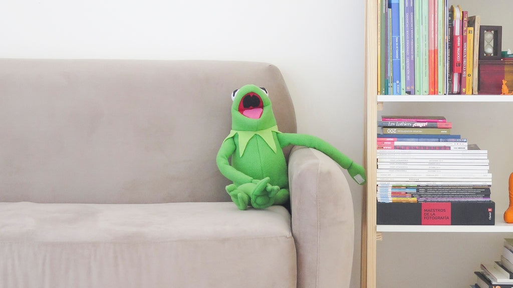 A plush Kermit chilling on the sofa