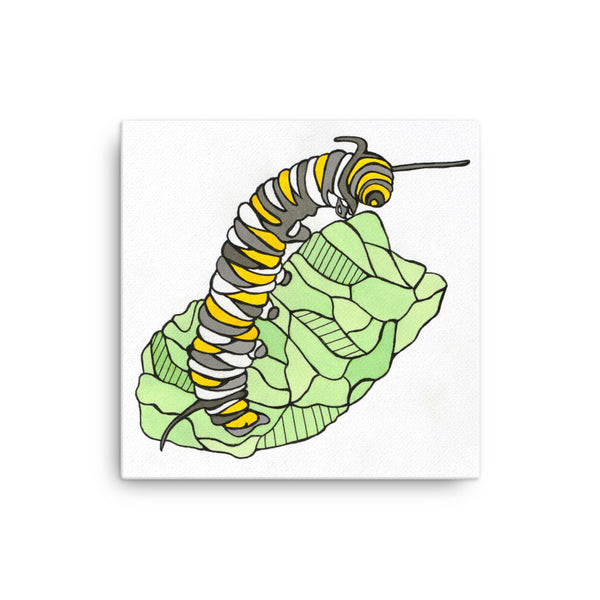 Caterpillar by Nicole Josie Canvas Print