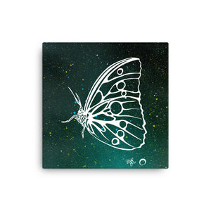 Butterfly Canvas Print by Miigizi
