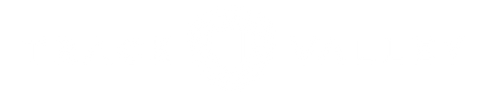Track Valley logo