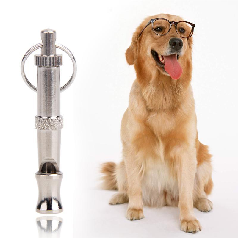 Sifflet ultrasons pour chien