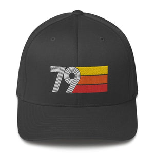 1979 Retro Fitted Structured Twill Cap
