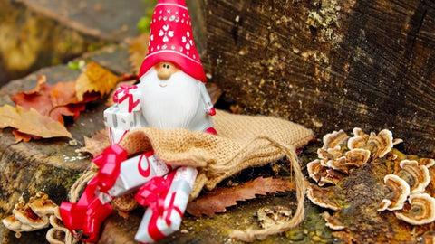 Christmas gnome sitting in a burlap hessian sack with mushrooms on the ground - The Sage haven