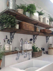 Utility room accessories and plants