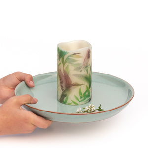 hands holding Tropical Birds Unscented Pillar Candle - the sage haven ireland