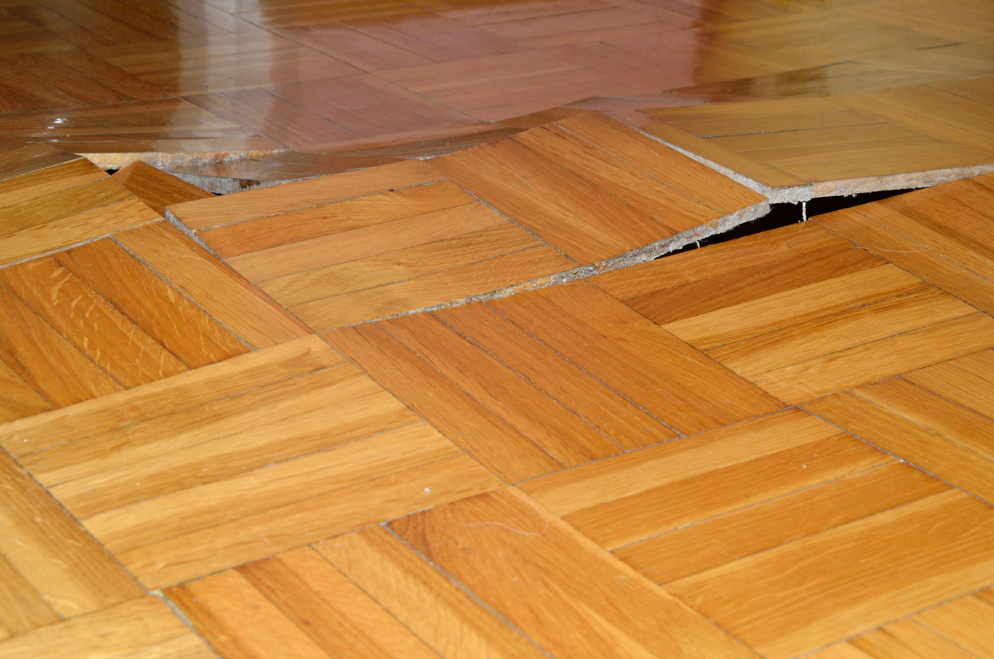 How To Fix A Buckled Wood Floor