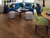 Paramount Engineered Hardwood Lake Shore Diversey