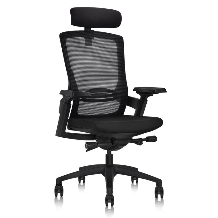 Ergonomic Office Chair with Wrapping headrest and tilt Limit Device | Adjustable headrest Height | Adjustable Waist Support | Adjustable 3D armrests