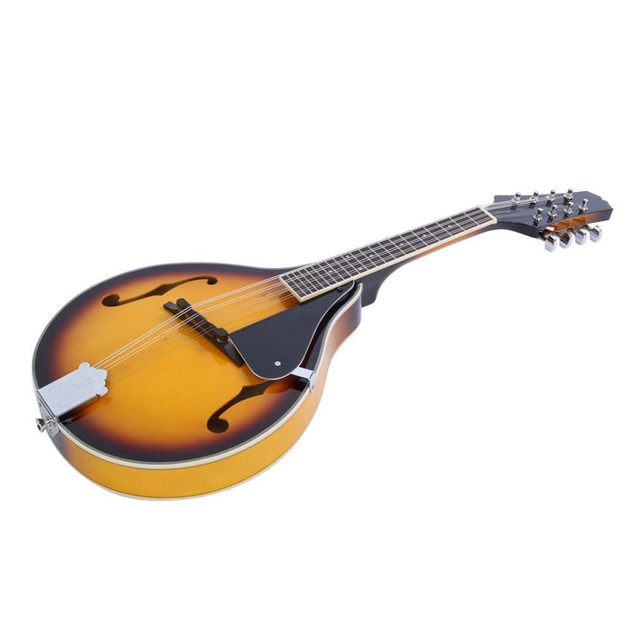 IRIN Wooden Classic Mandolin 8 String Guitar with Carry Storage Bag