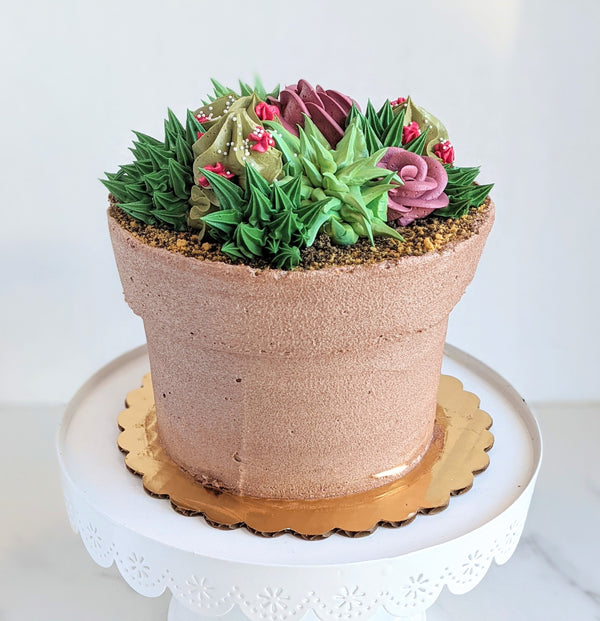 Spring Succulent Pot Cake - Limited Time Only!