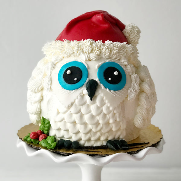 Winter Owl Cake with Character