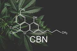 CBN Products of Hemp Living USA