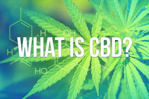 What Does CBD Stand For? And What is CBD Oil?