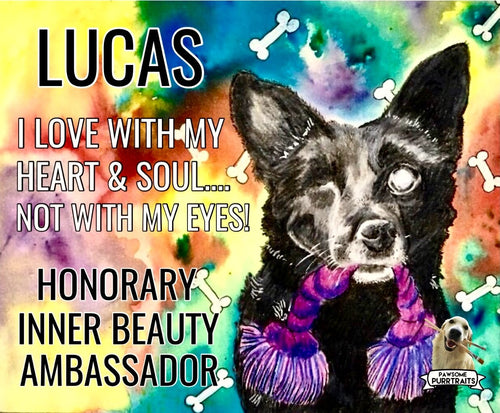 Lucas's Honorary Inner Beauty Ambassador Sticker (FREE SHIPPING)
