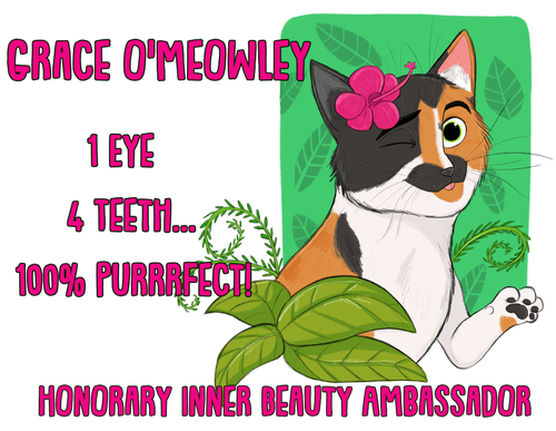 Grace O'Meowley's Honorary Inner Beauty Ambassador Sticker (FREE SHIPPING)