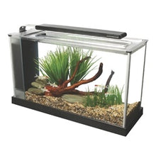 Fluval Spec 19 L (5 US gal) - Black - Desktop Glass Aquarium