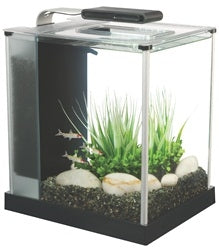 Fluval Spec 10 L (2.6 US gal) - Black - Desktop Glass Aquarium