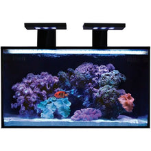 Innovative Marine Nuvo Fusion 20 Gallon Kit