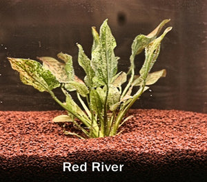 Grow-Pro: Freshwater Planted Aquarium Substrate