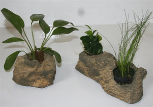 Faux Rock Planter
