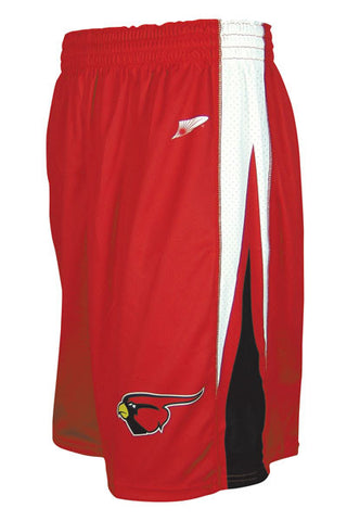 Custom Sublimated Basketball Short Design 150-5